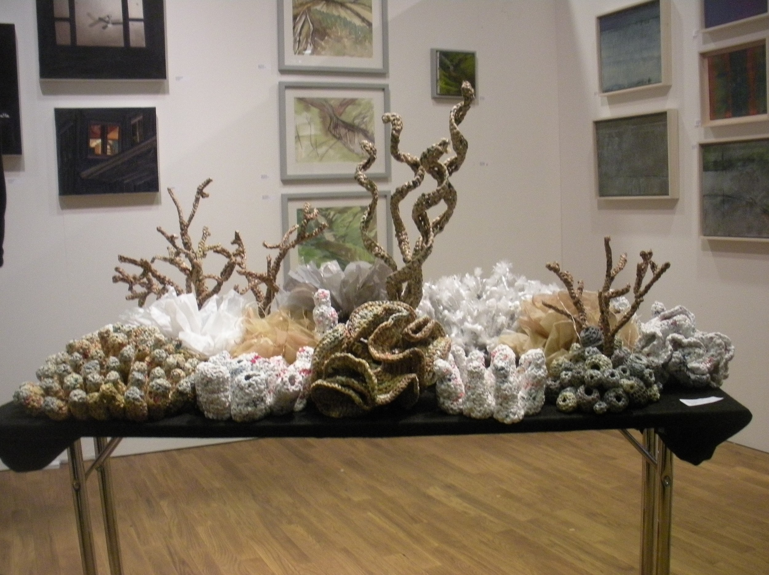 Foreground: Coral Reef, by Mary Ellen Croteau, crocheted plastic bags. Background: ( left to right) paintings by Gwen Zabicki, Alison Whitmore, Jane Michalski.