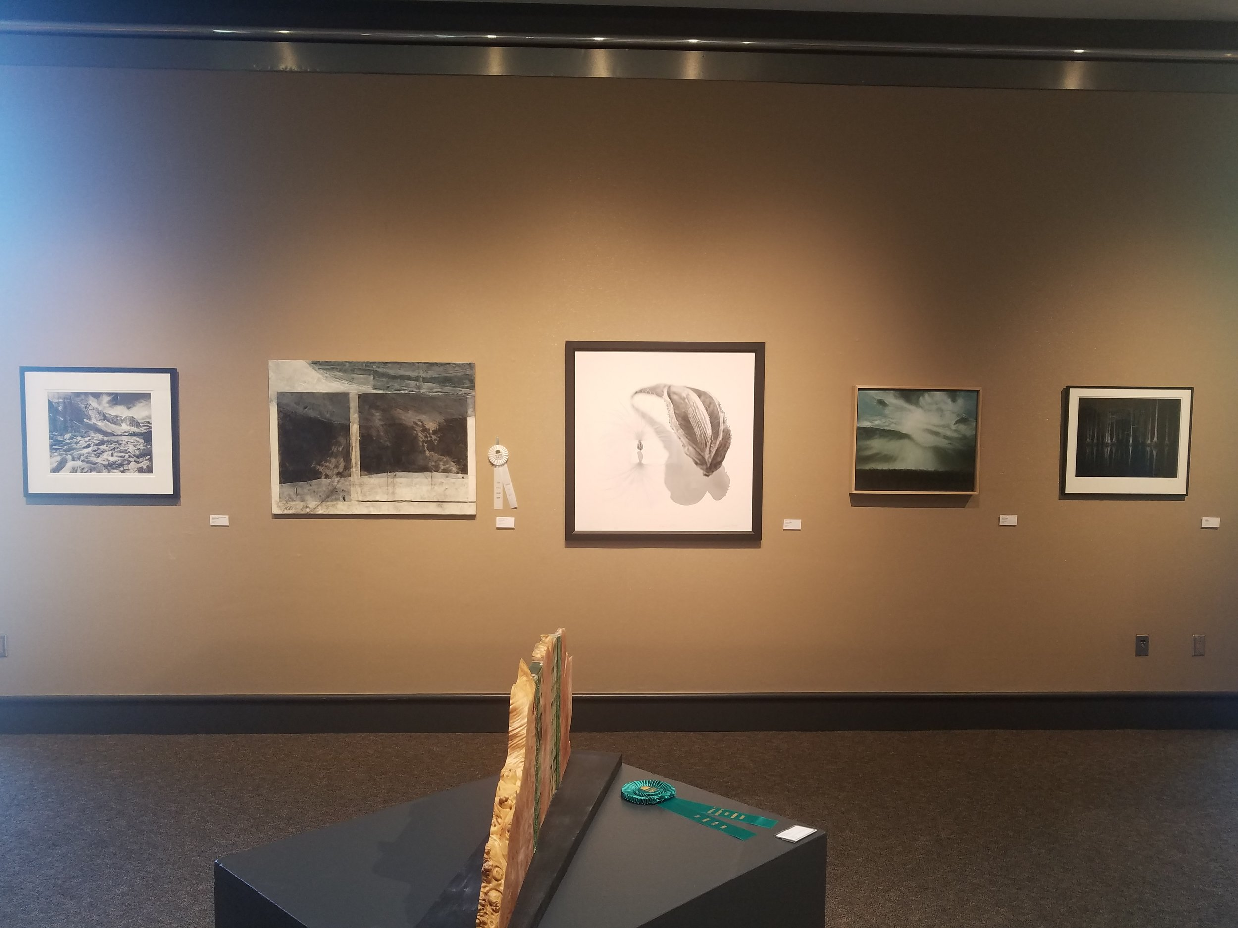 South Shore Arts Salon Show - view of wall 1.jpg