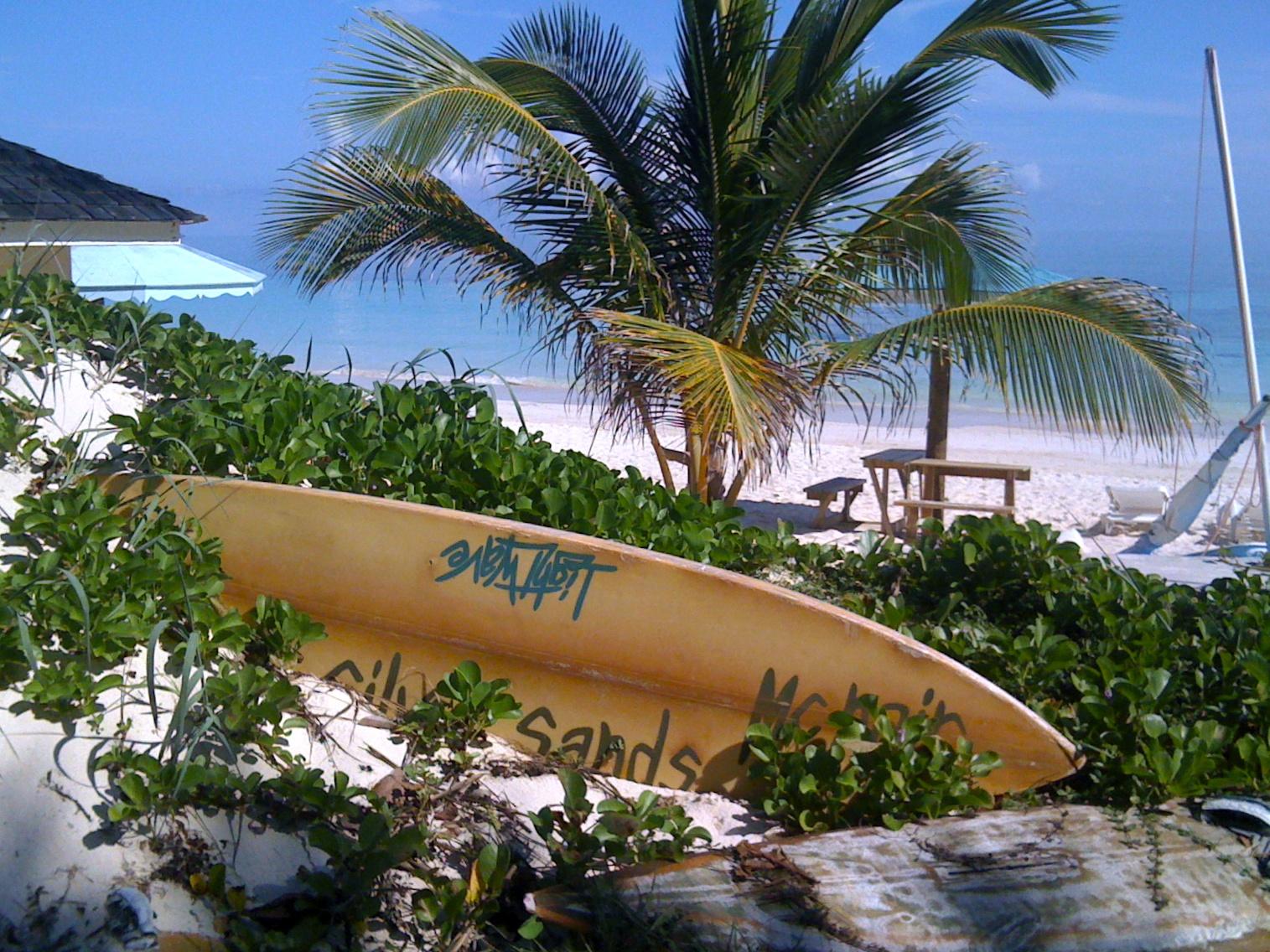 Surf Board @ Silver Sands.jpg