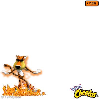 cheetos_rich_3.jpeg