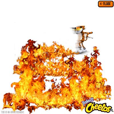 cheetos_rich_5.jpeg