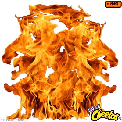 cheetos_rich_7.jpeg