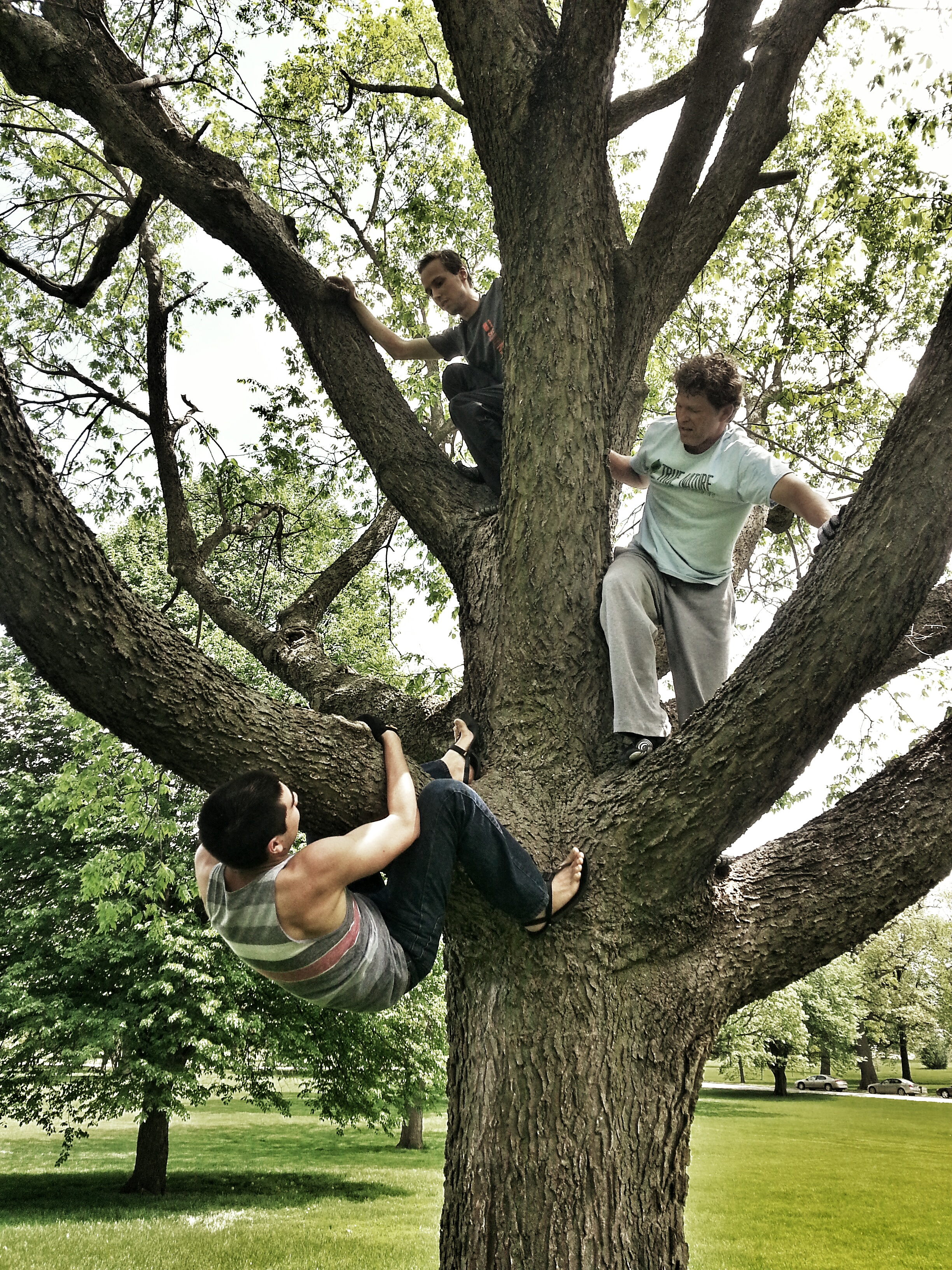 Playout with Des Moines Paleo - Tree Climbing