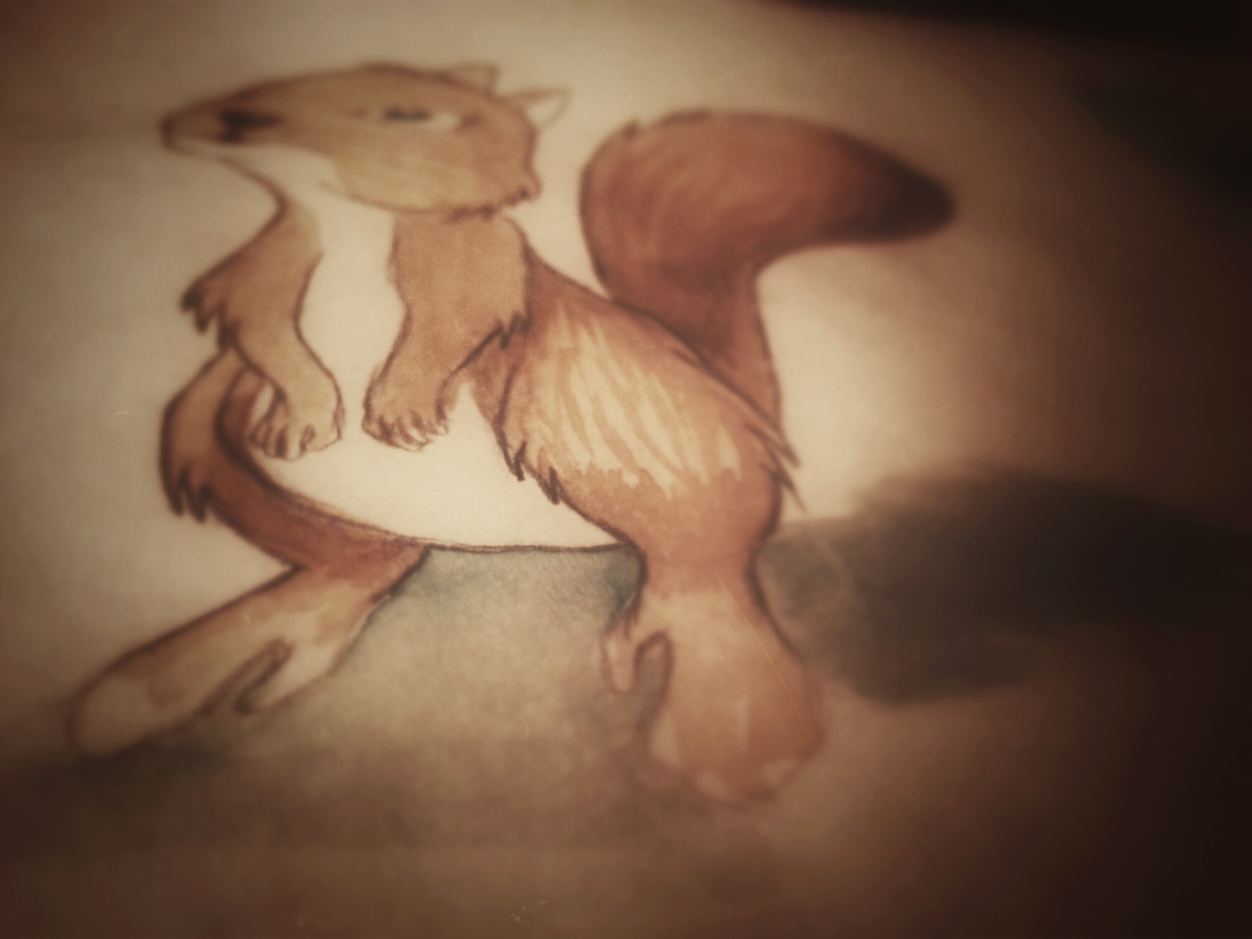 Squirrel watercolor by Derek Mit