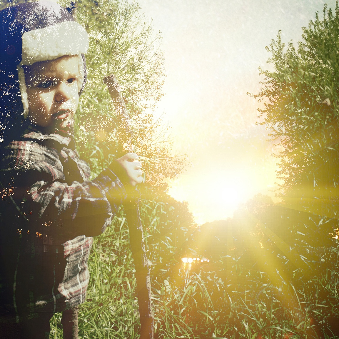 A double exposure edit of Ryker the Hiker with some trees, as seen in the next photo.