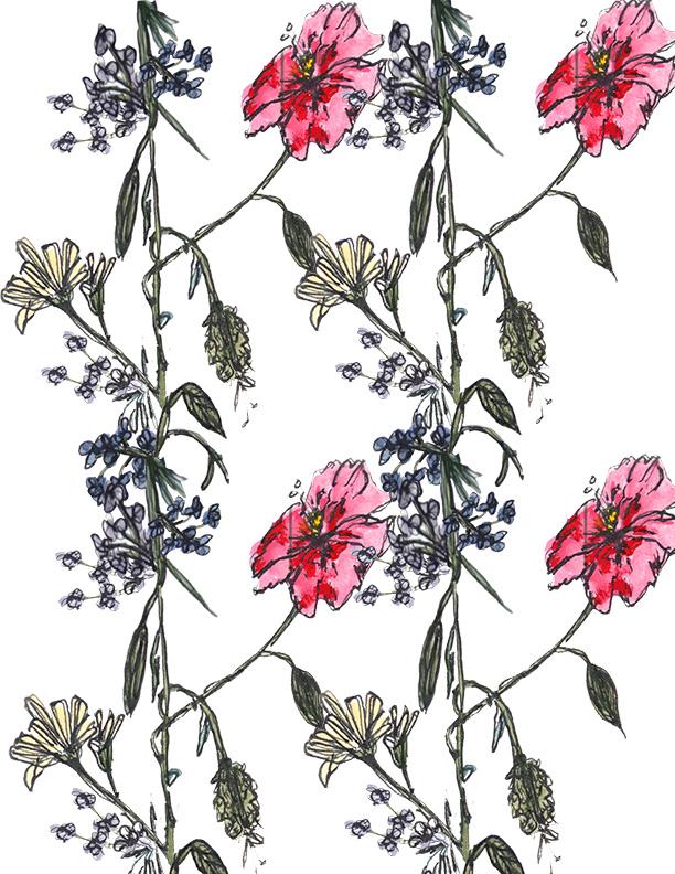 Scandinavian Wildflowers