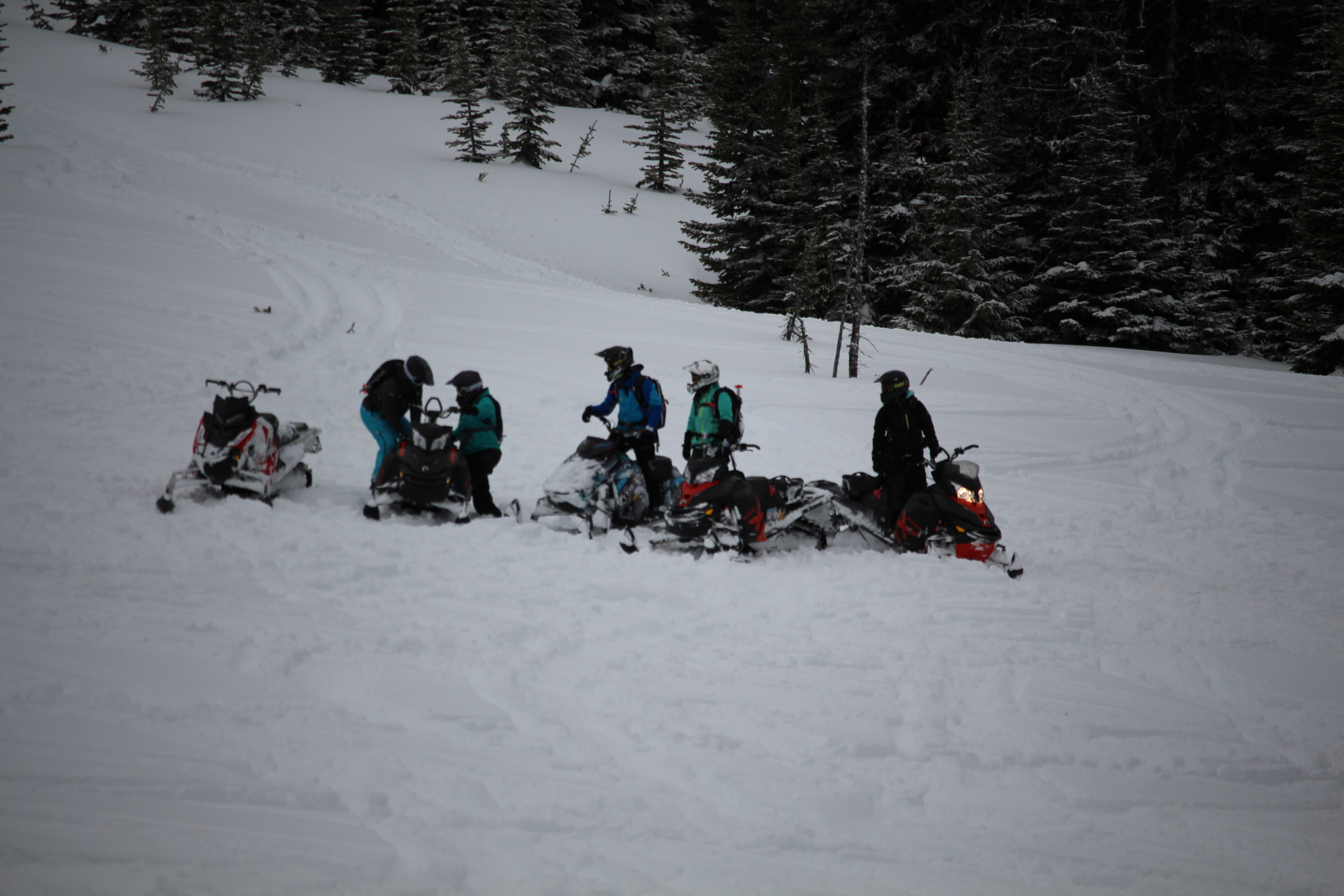 Lanina sled camp 059.jpg