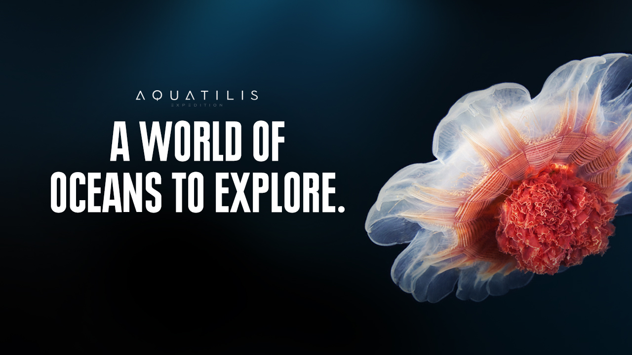 aquatilis_intro.jpg