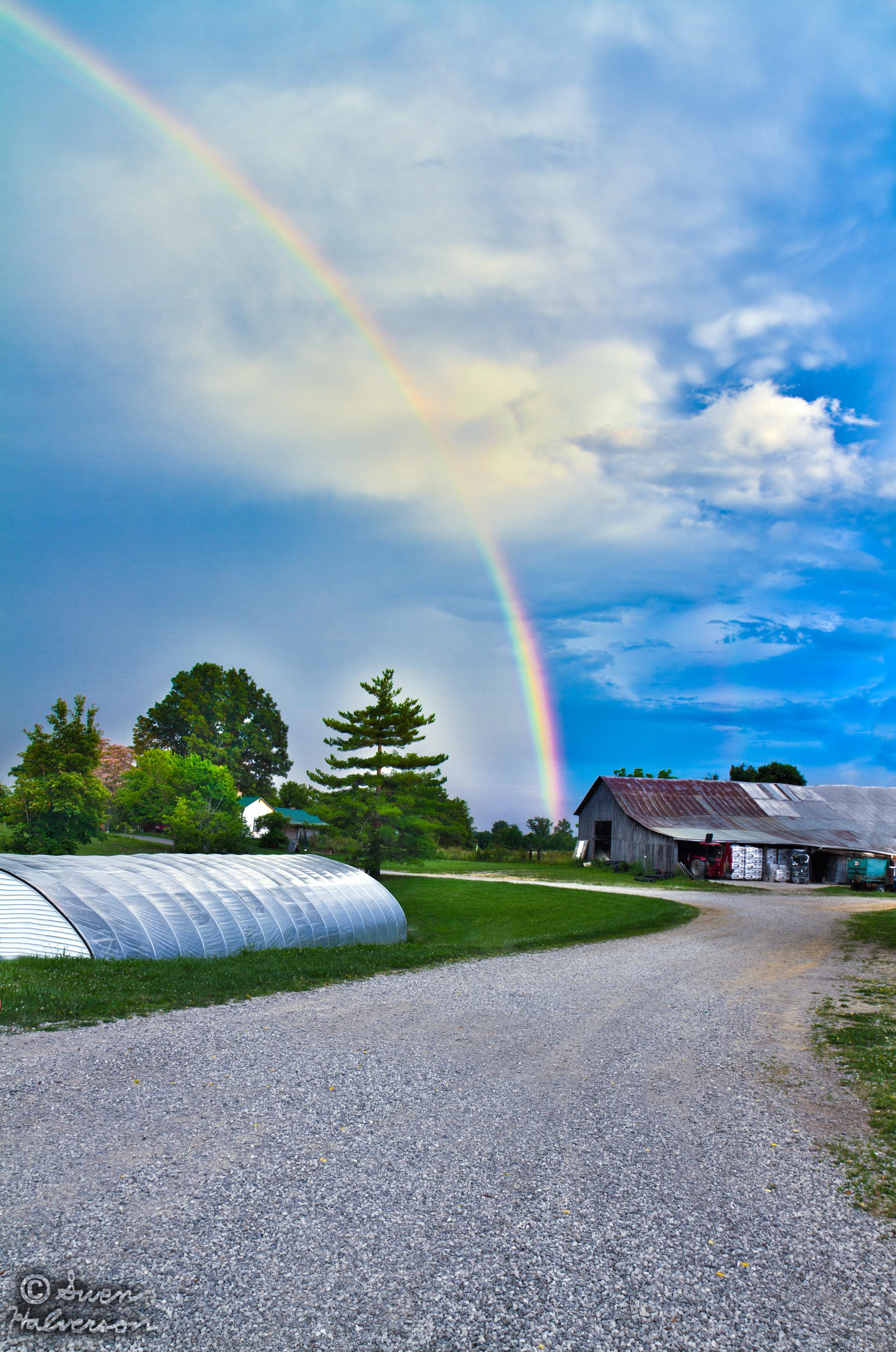 Theme: Under <br>Title: Under The Rainbow