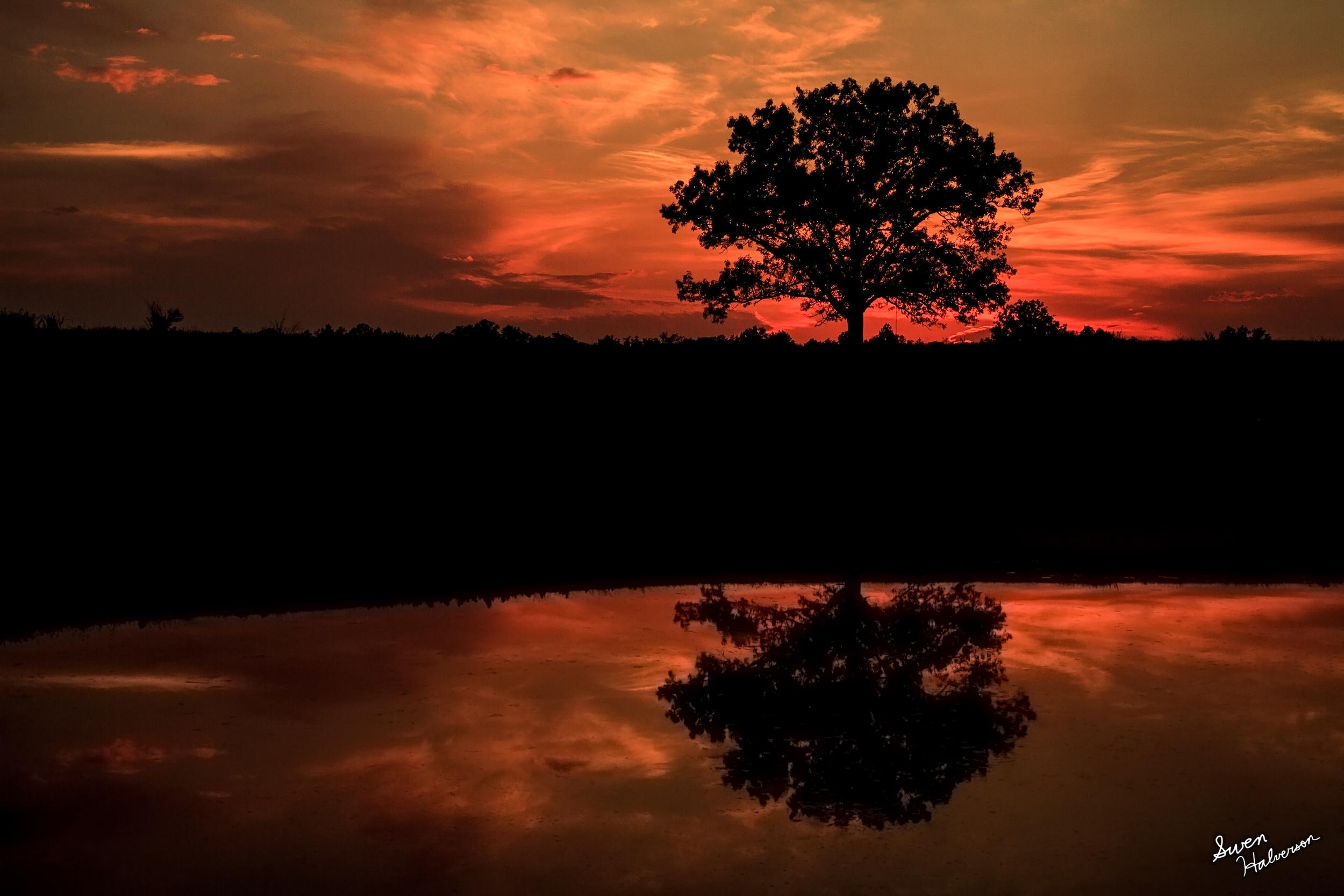Theme: Peace <br>Title: Peaceful Sunset