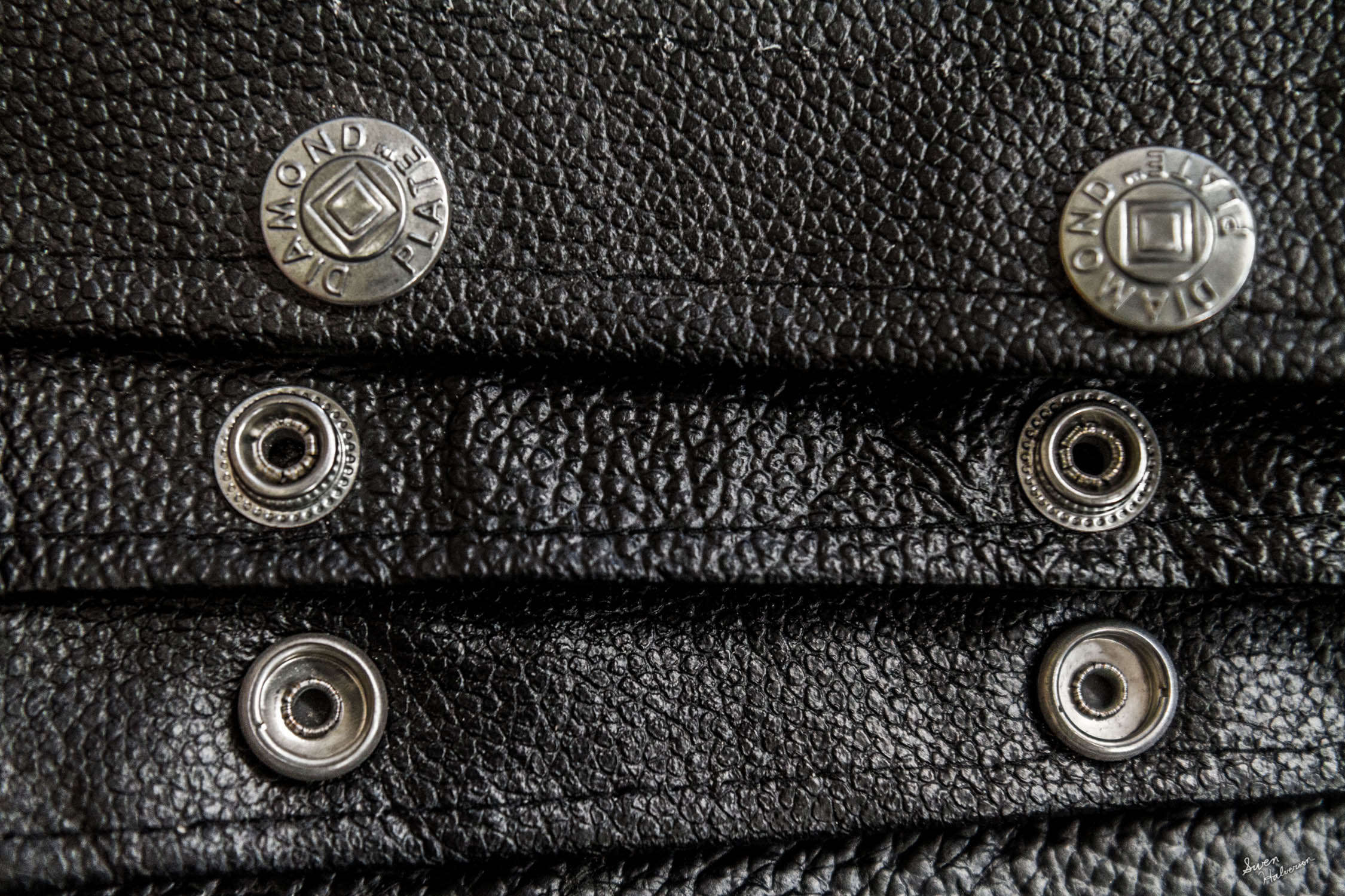 Theme: Snap Title: Snaps On Leather