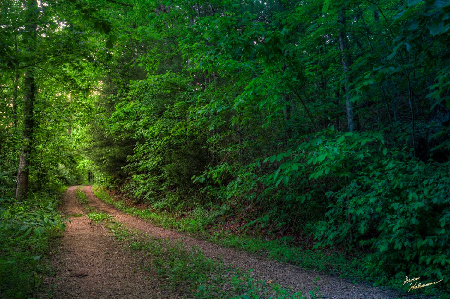 Theme: Hollar | Title: Down The Road