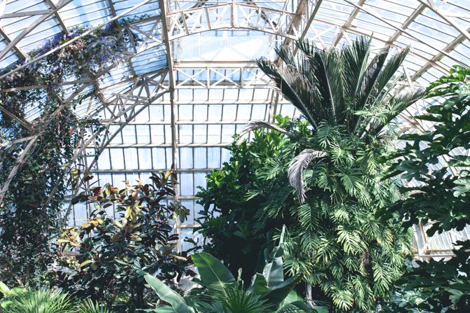 christchurch botanic gardens // via netherleighblog.com