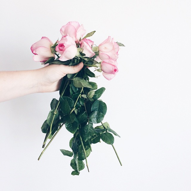 note to self check for thorns before grabbing incredibly thorny roses with your bare hands... also, have a lovely weekend!.jpg