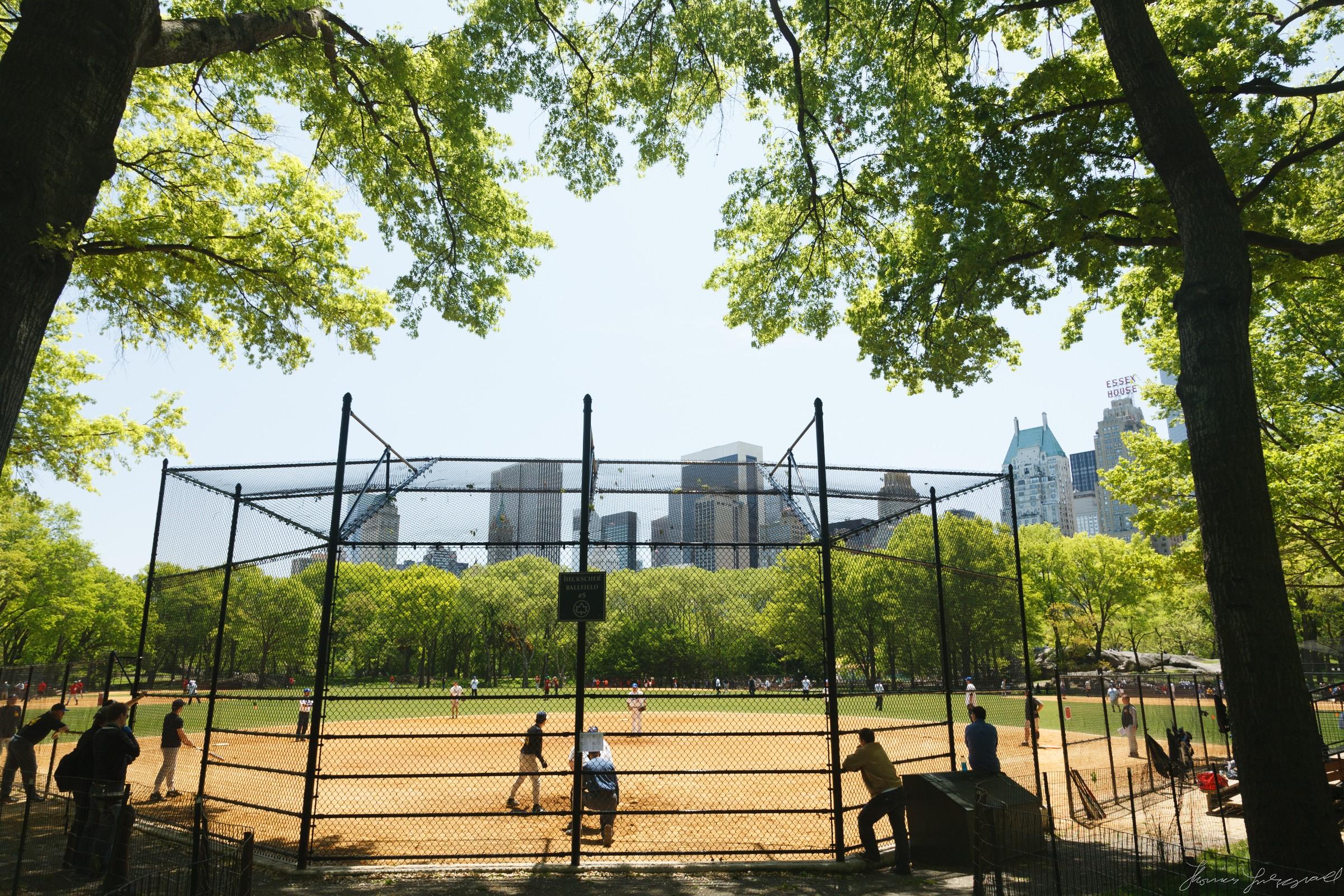 Central-Park-New-York-City-9.jpg