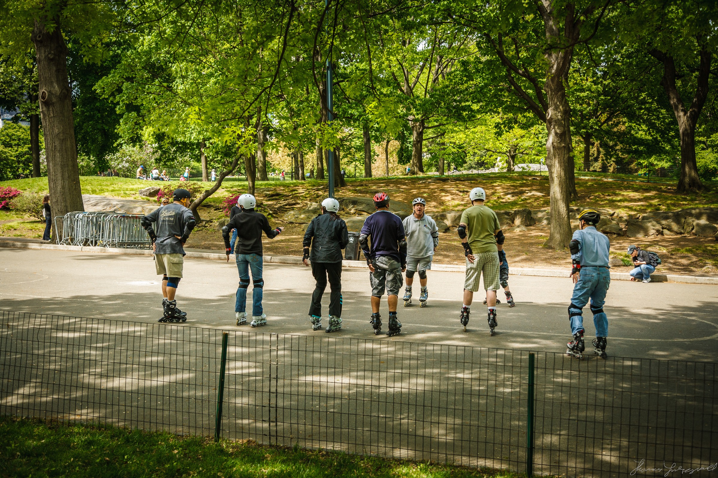 Central-Park-New-York-City-4.jpg
