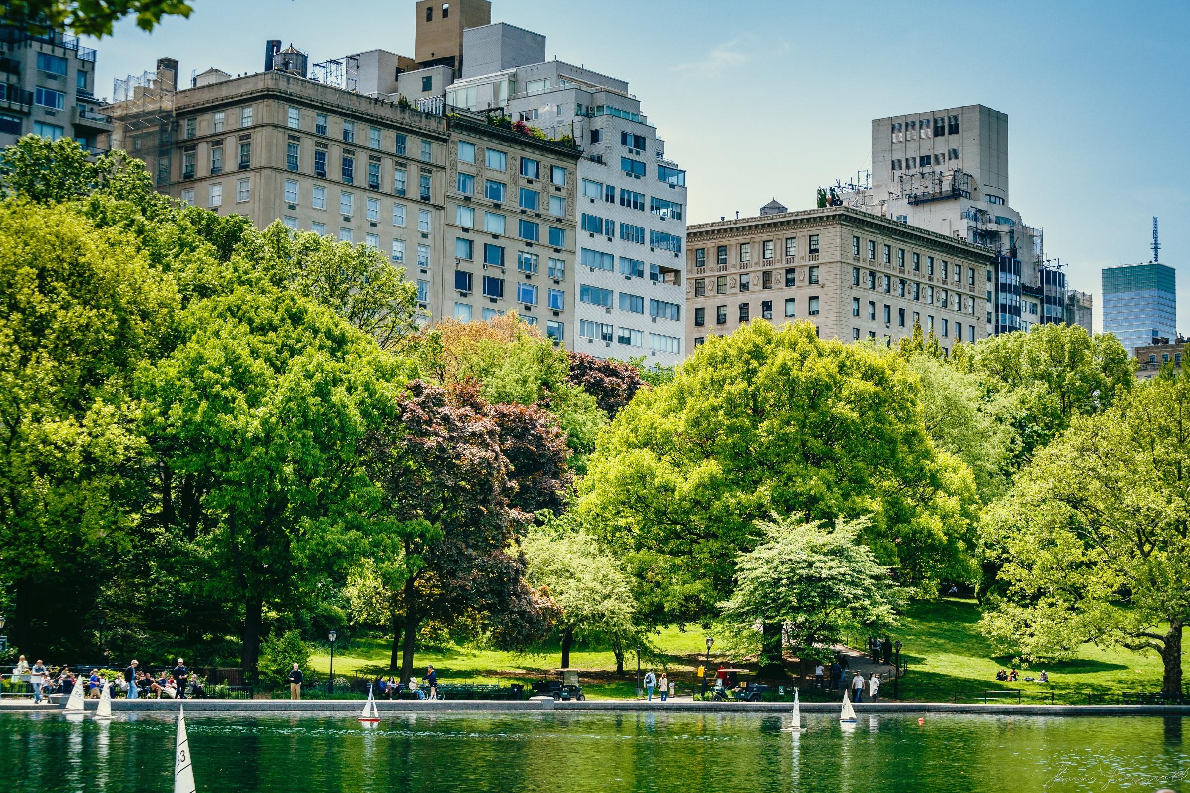 Central-Park-New-York-City-6.jpg