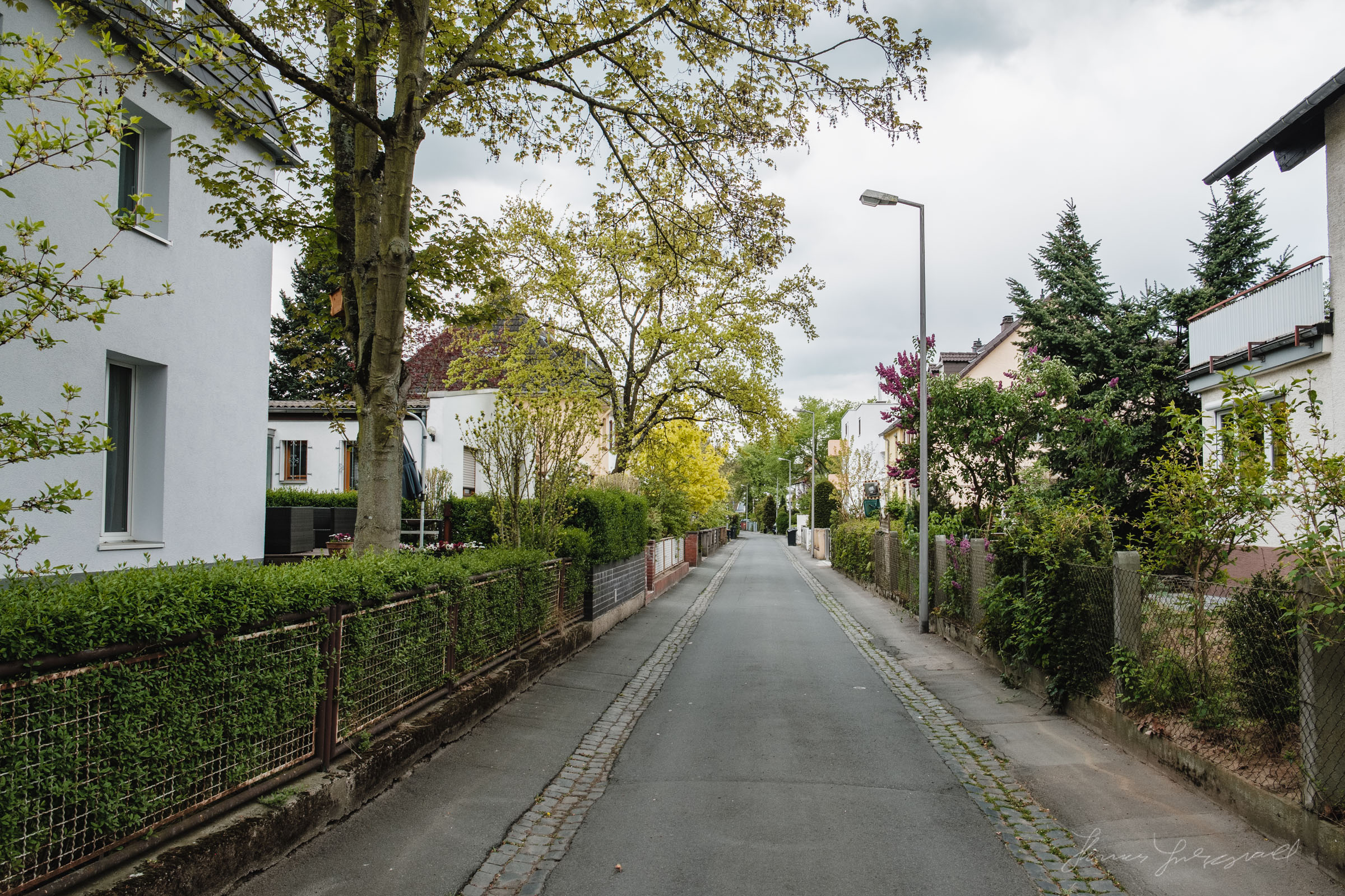 Leafy Suburbs of Darmstadt