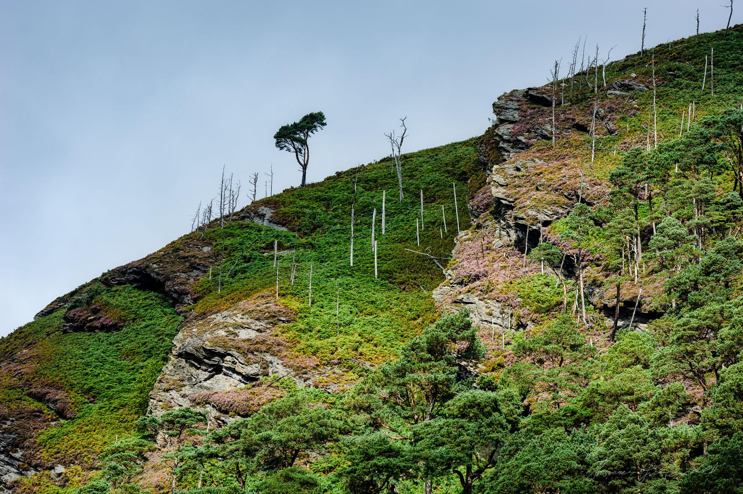 Glendalough Mountains
