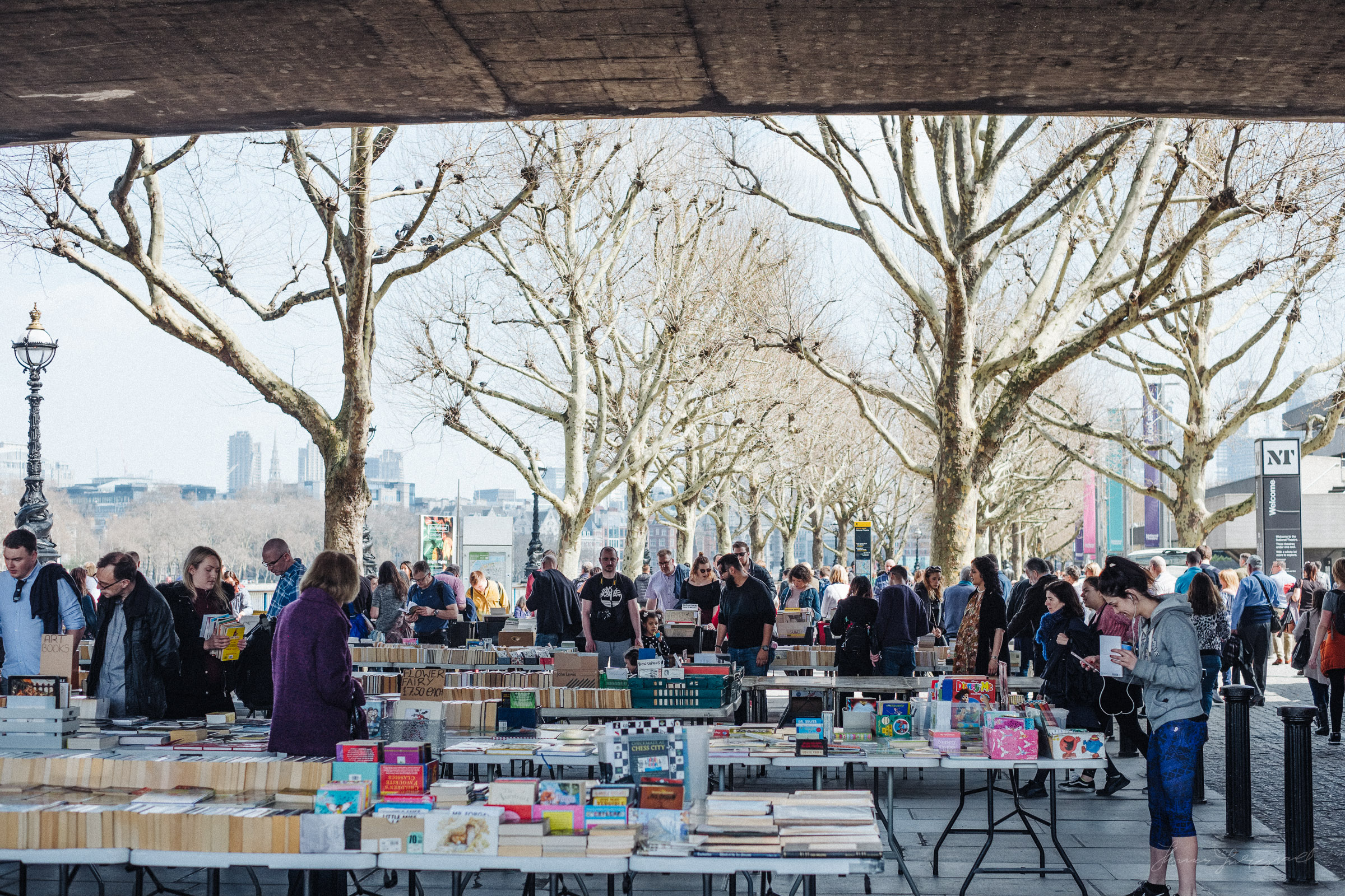 browsing the second hand book stalls at a Southbank book fair in London