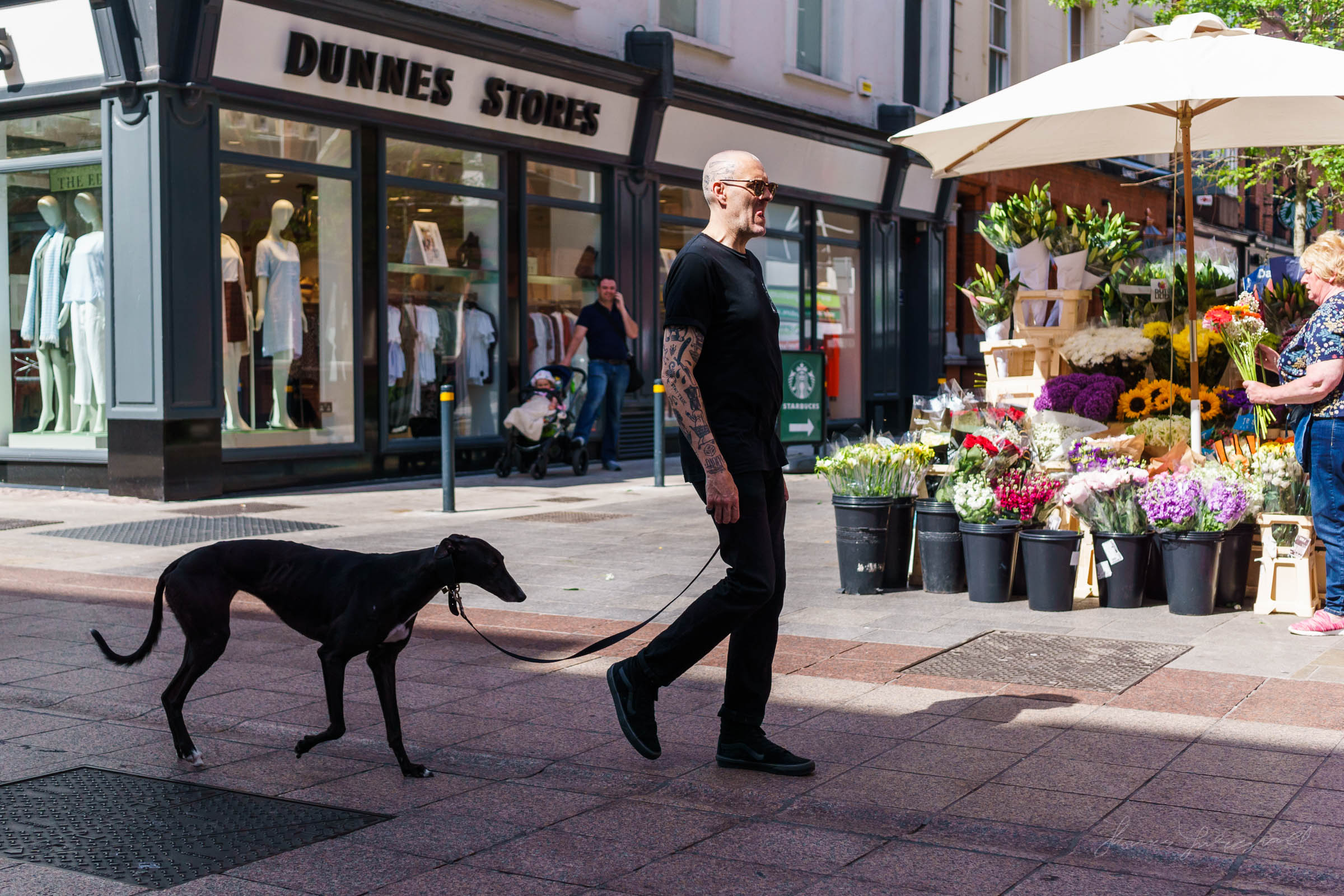 Man walking Greyhound