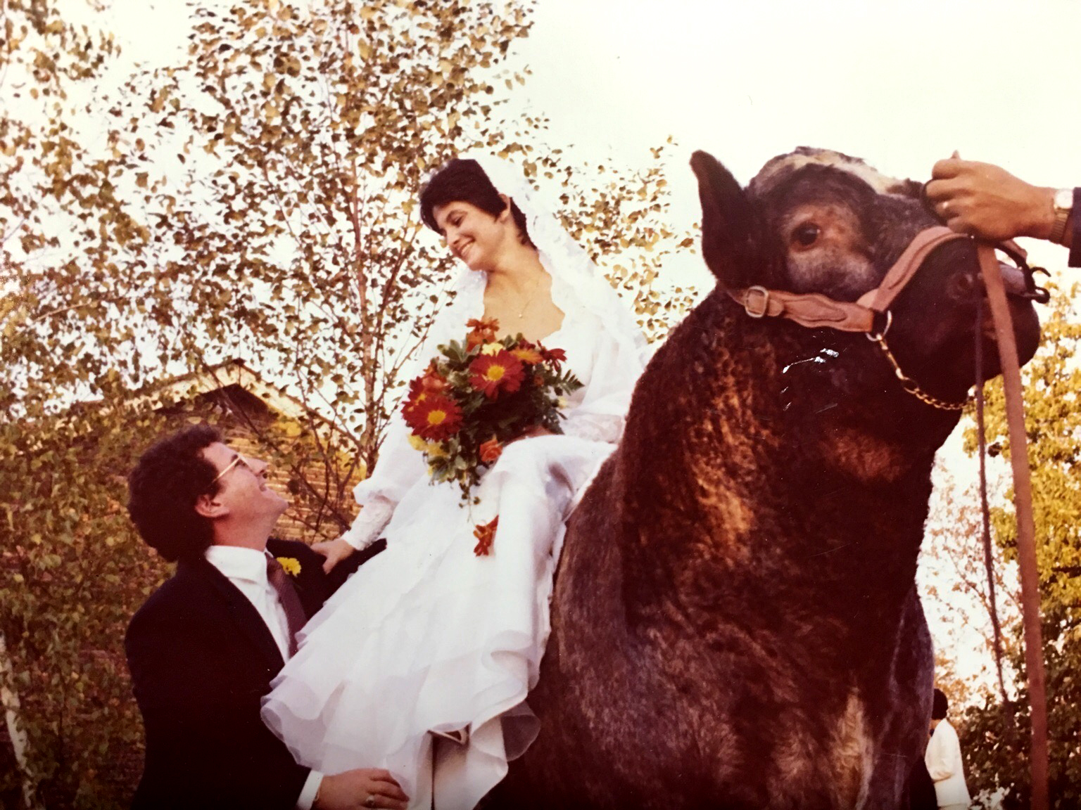 Wedding Day on the Bull
