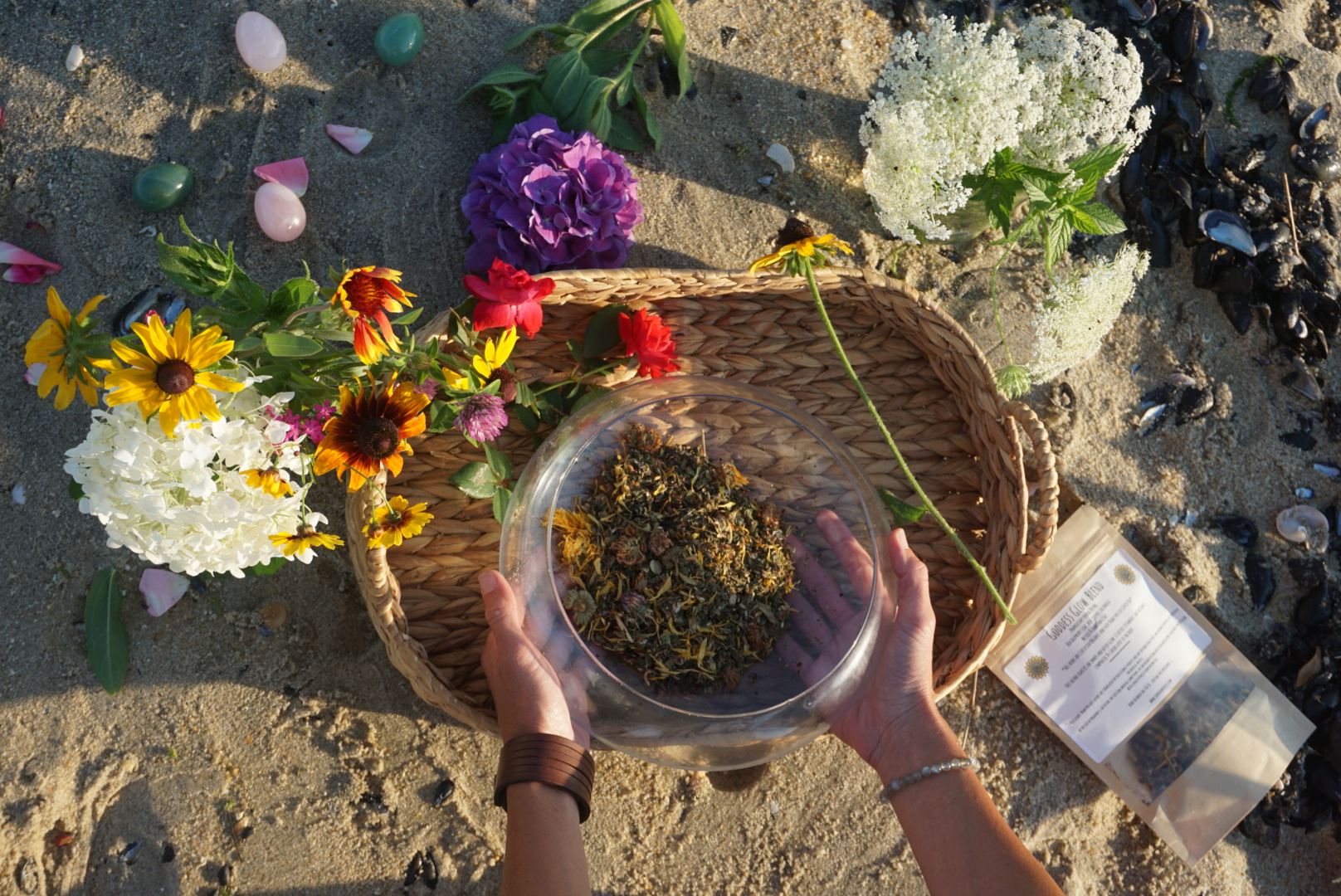 herbs on the beach.JPG