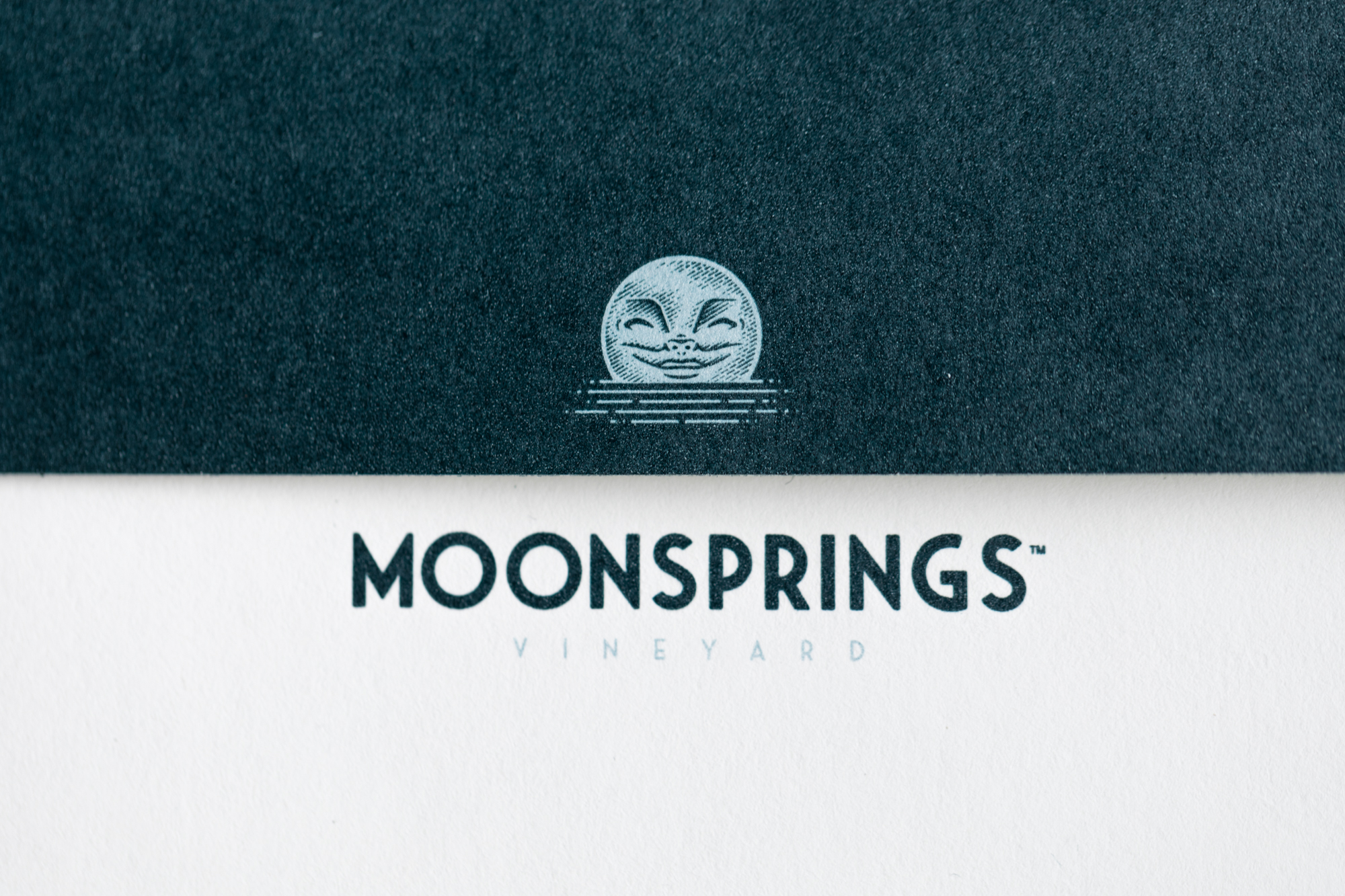 Moon_Springs_Stationary-2.jpg
