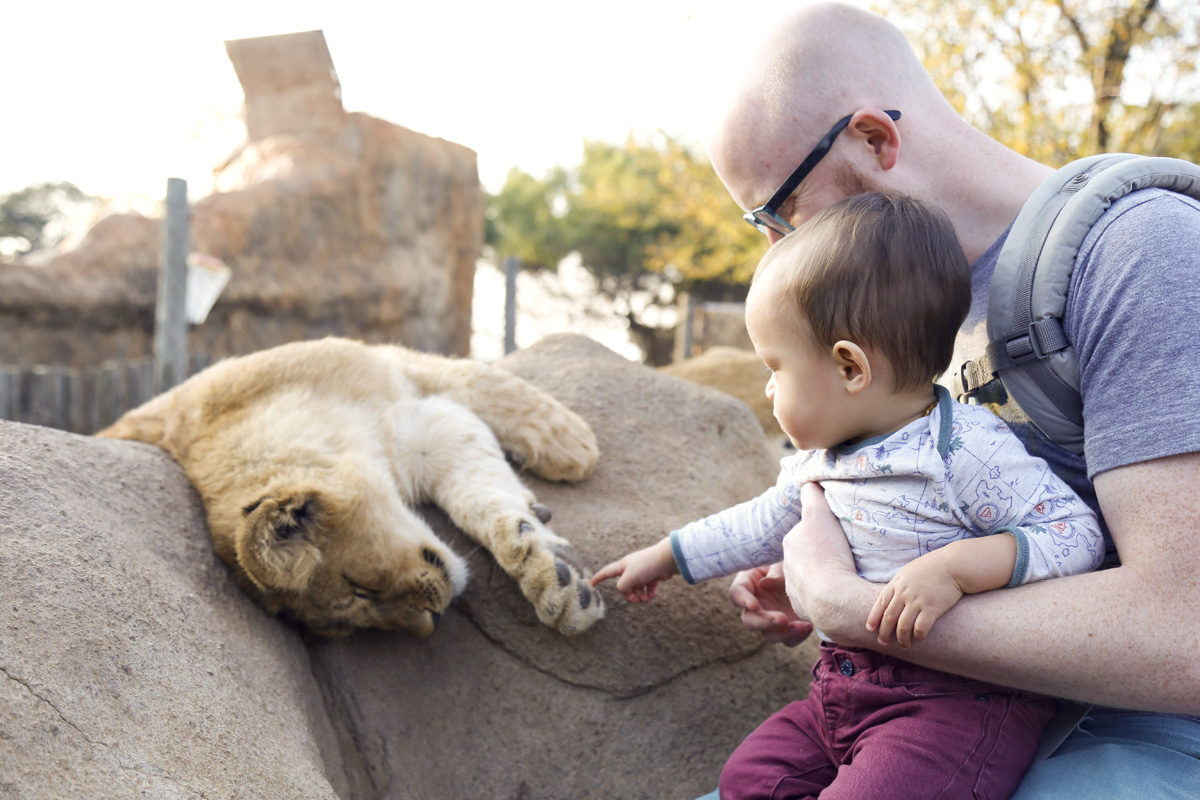He actually pet the cub on his own!