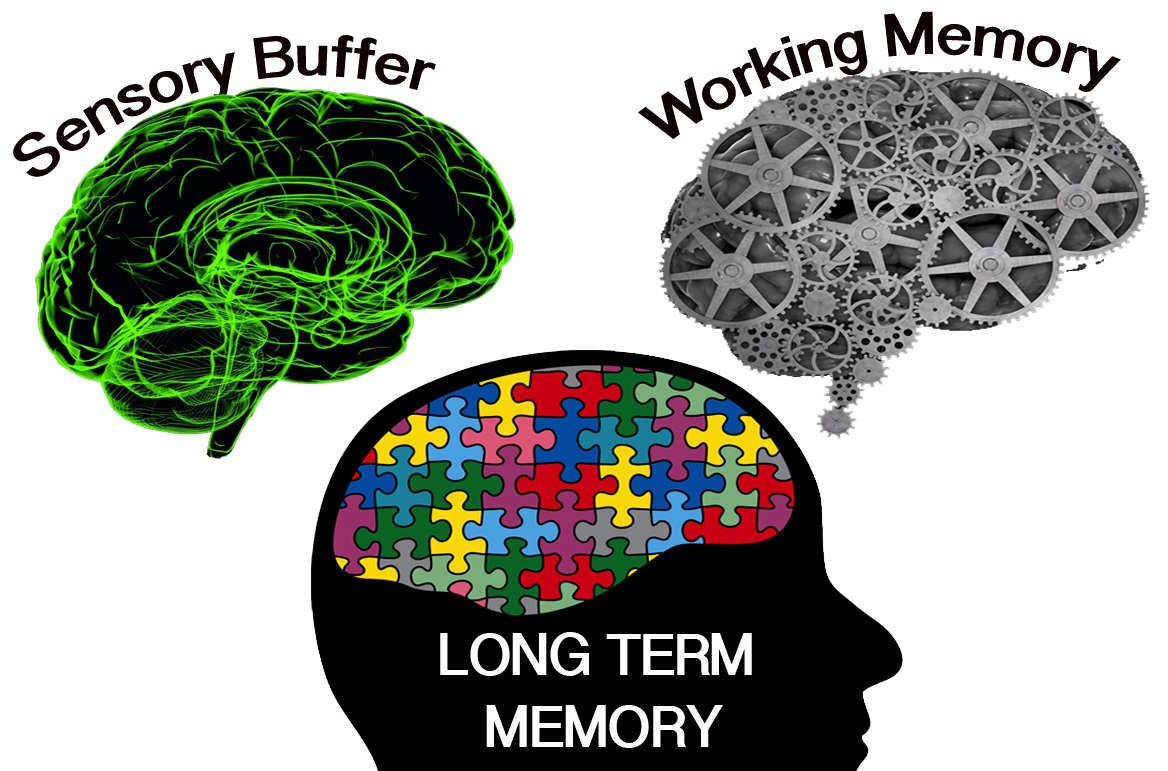 Human Cognitive Architecture - Learning occurs when we form schemas in Long Term Memory