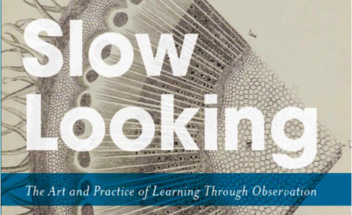 Slow Looking by Shari Tishman