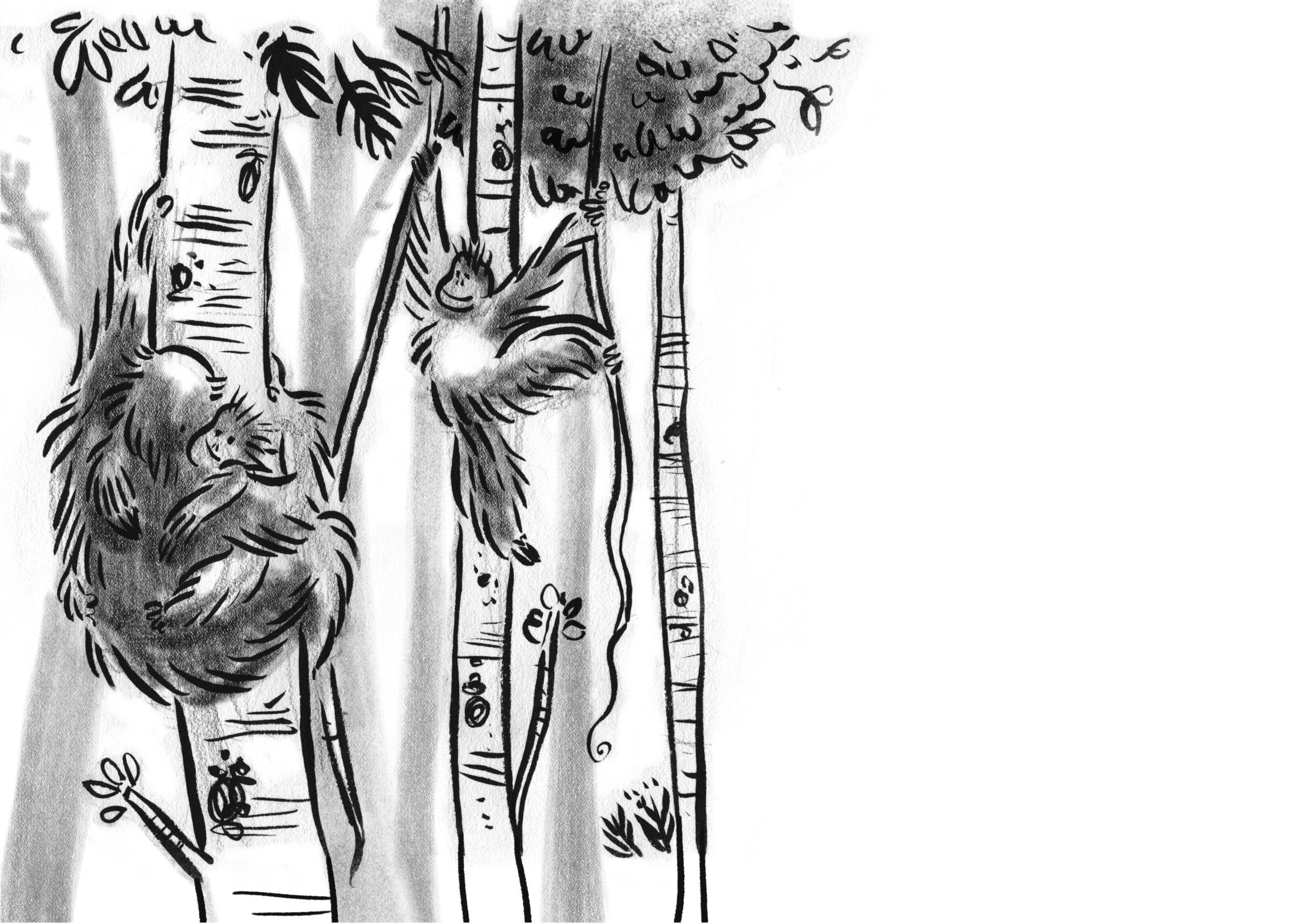 treedancers_0002_4-5 - Note About Tanka.jpg