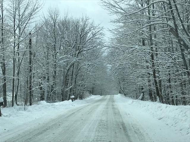 Shawn Anderson snowy road.jpg