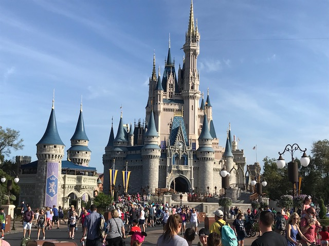 Shawn Anderson Disney castle.jpg