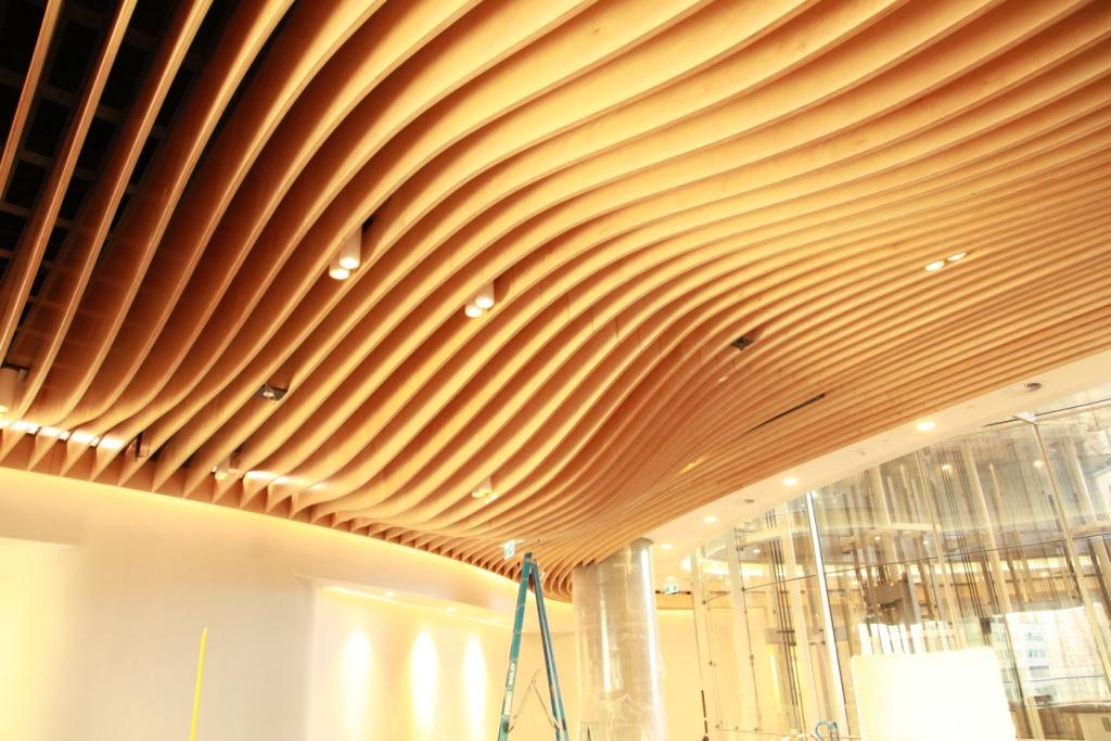 Clayton Utz ceiling feature