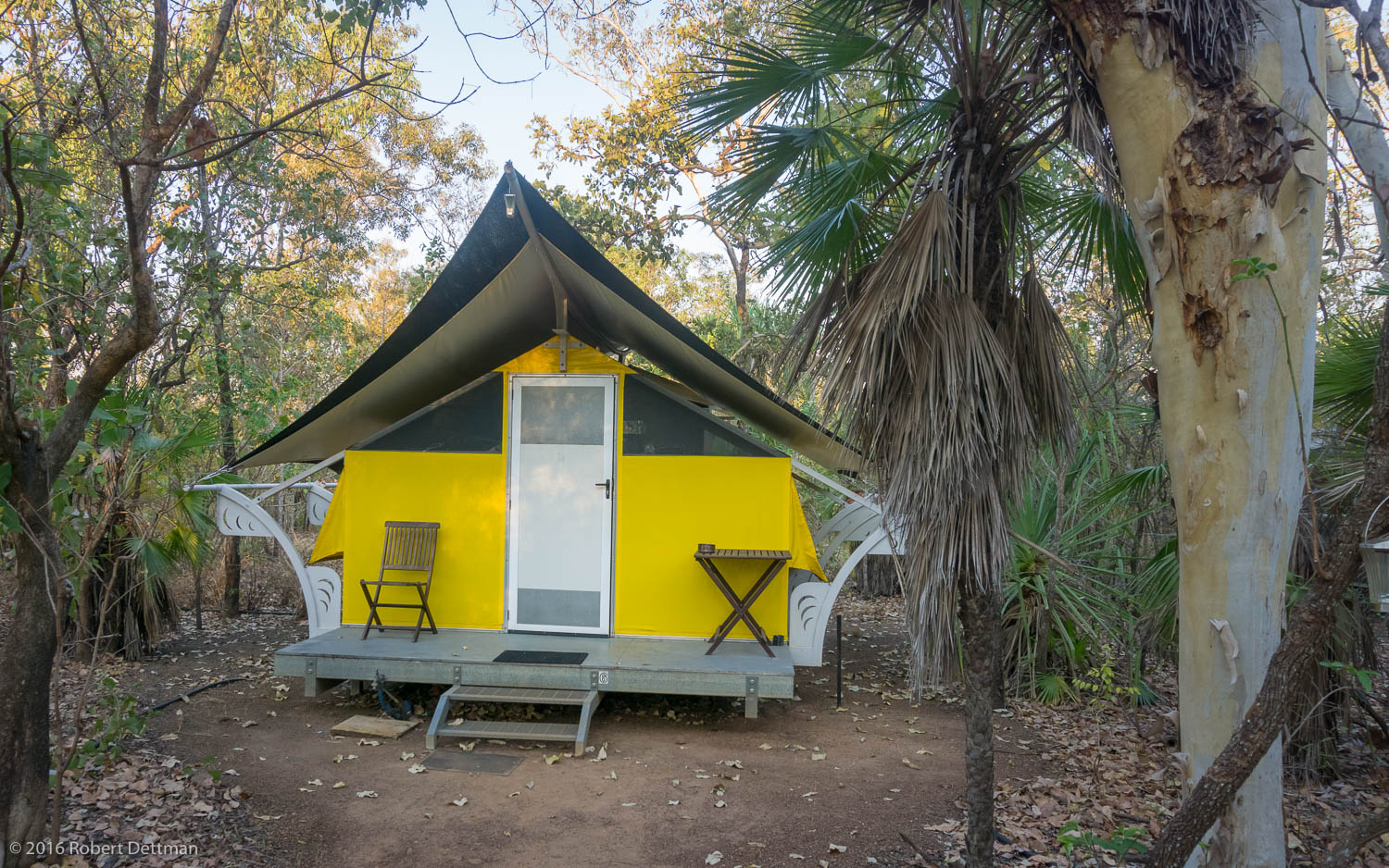 """Hawk Dreaming Wilderness Lodge, our """"home among the gum trees"""" for two nights."""