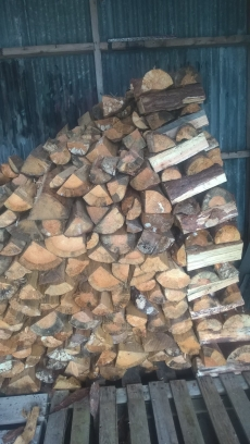 Firewood getting stacked at the Alt Inn.
