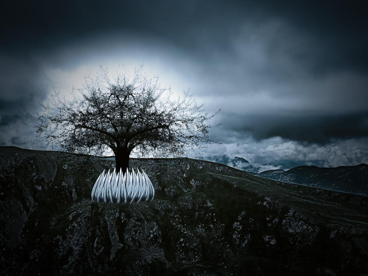 Garden of Life [Alexander Mikula]