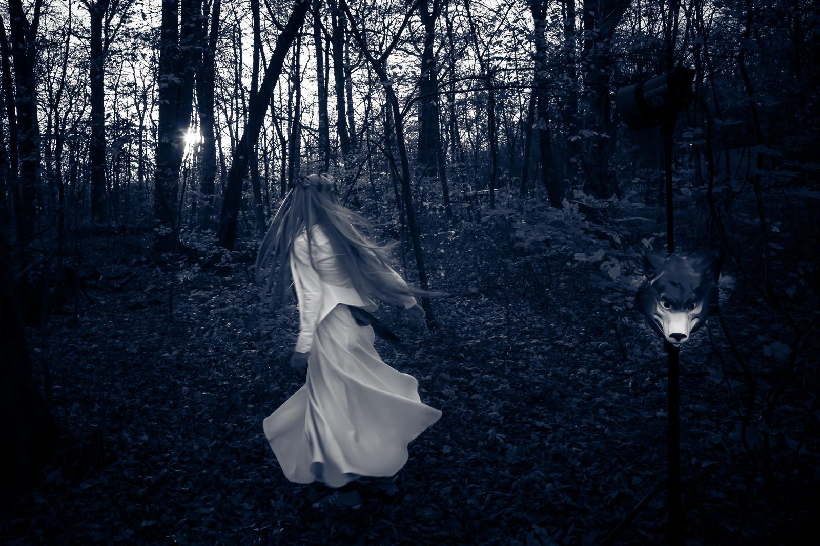 In den Wald [Andrea Neumann]
