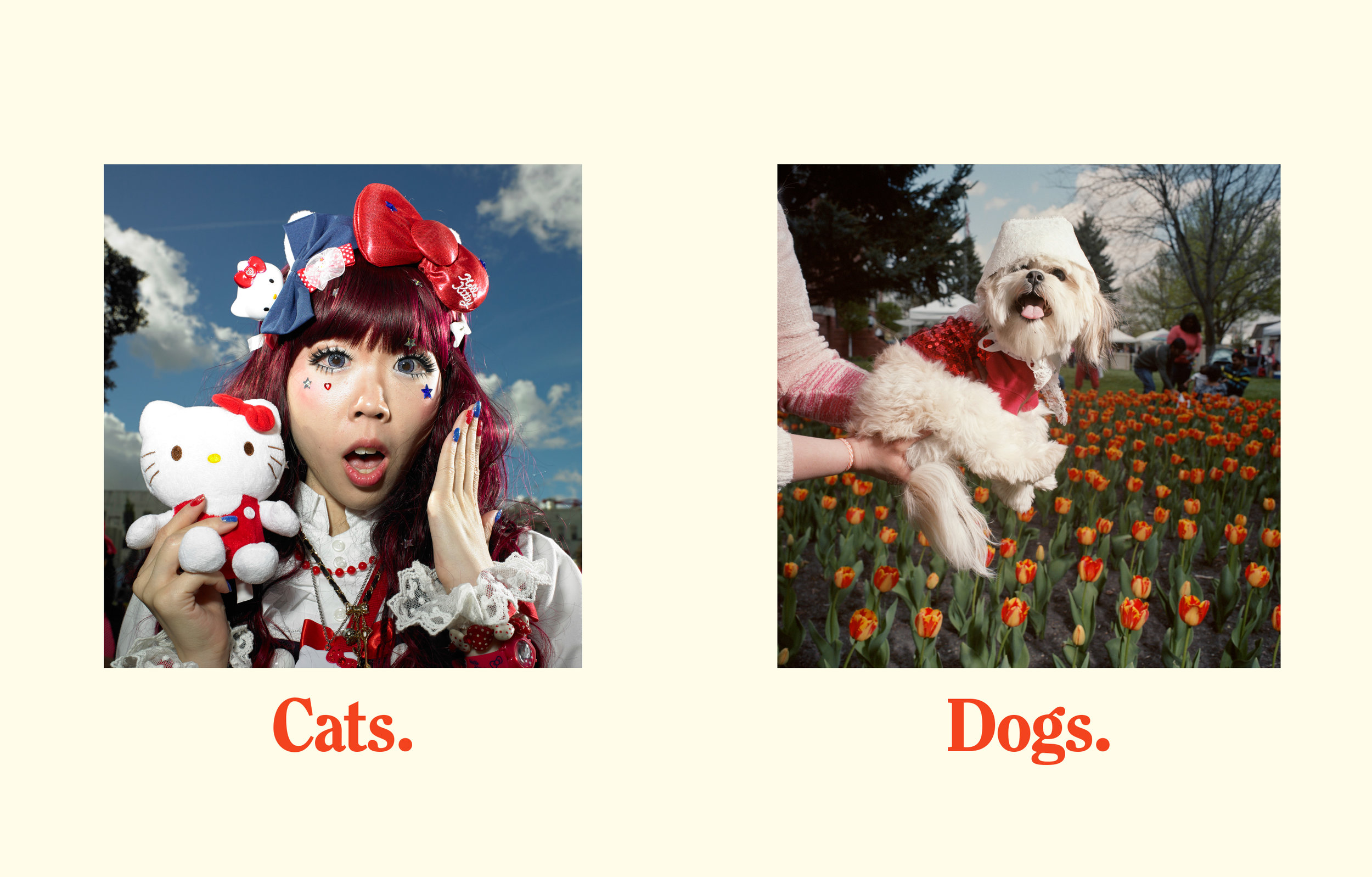 NH_CatsDogs.jpg