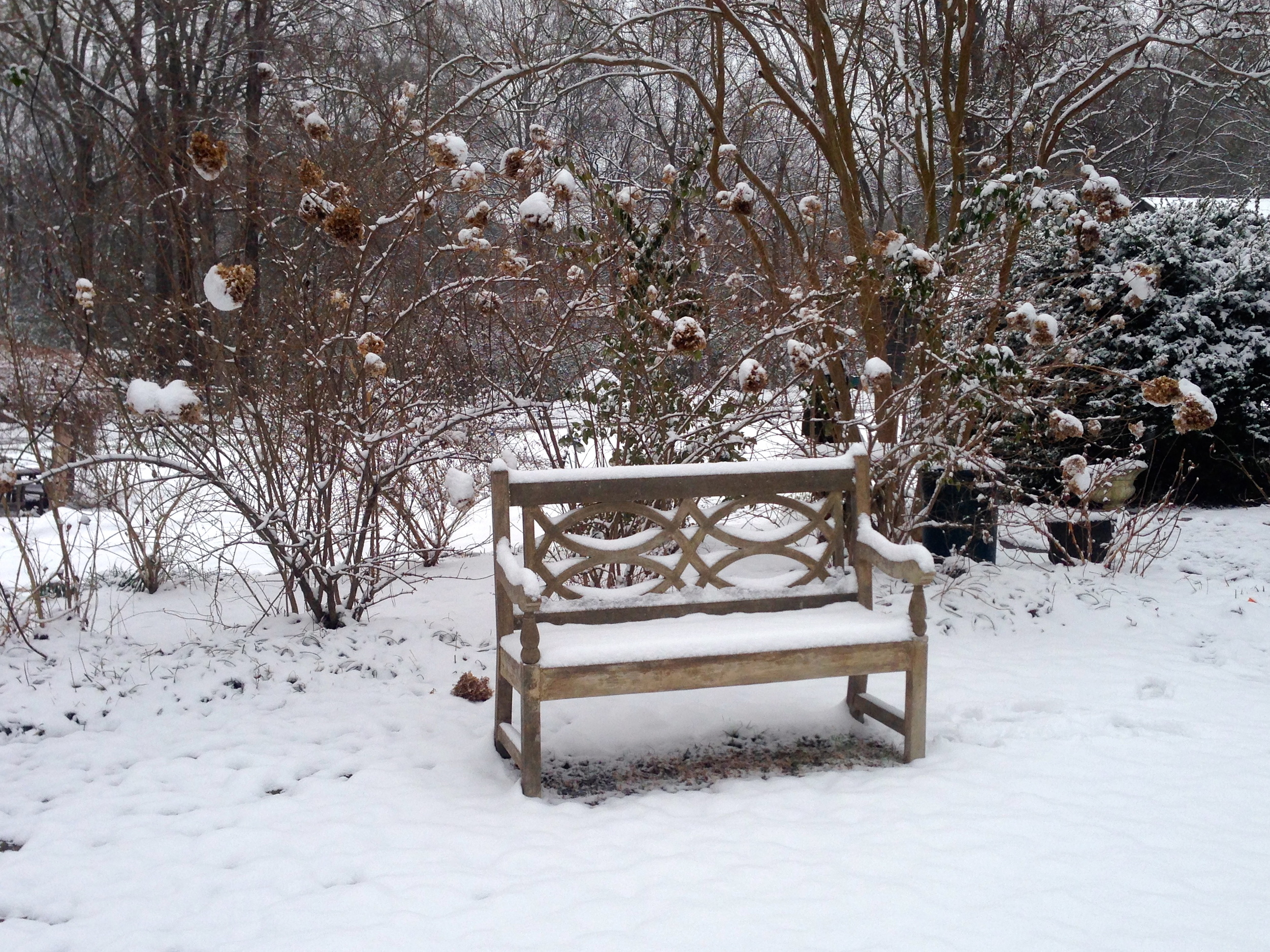 A Currey & Company faux bois bench is ornamented but unfazed by the snow.