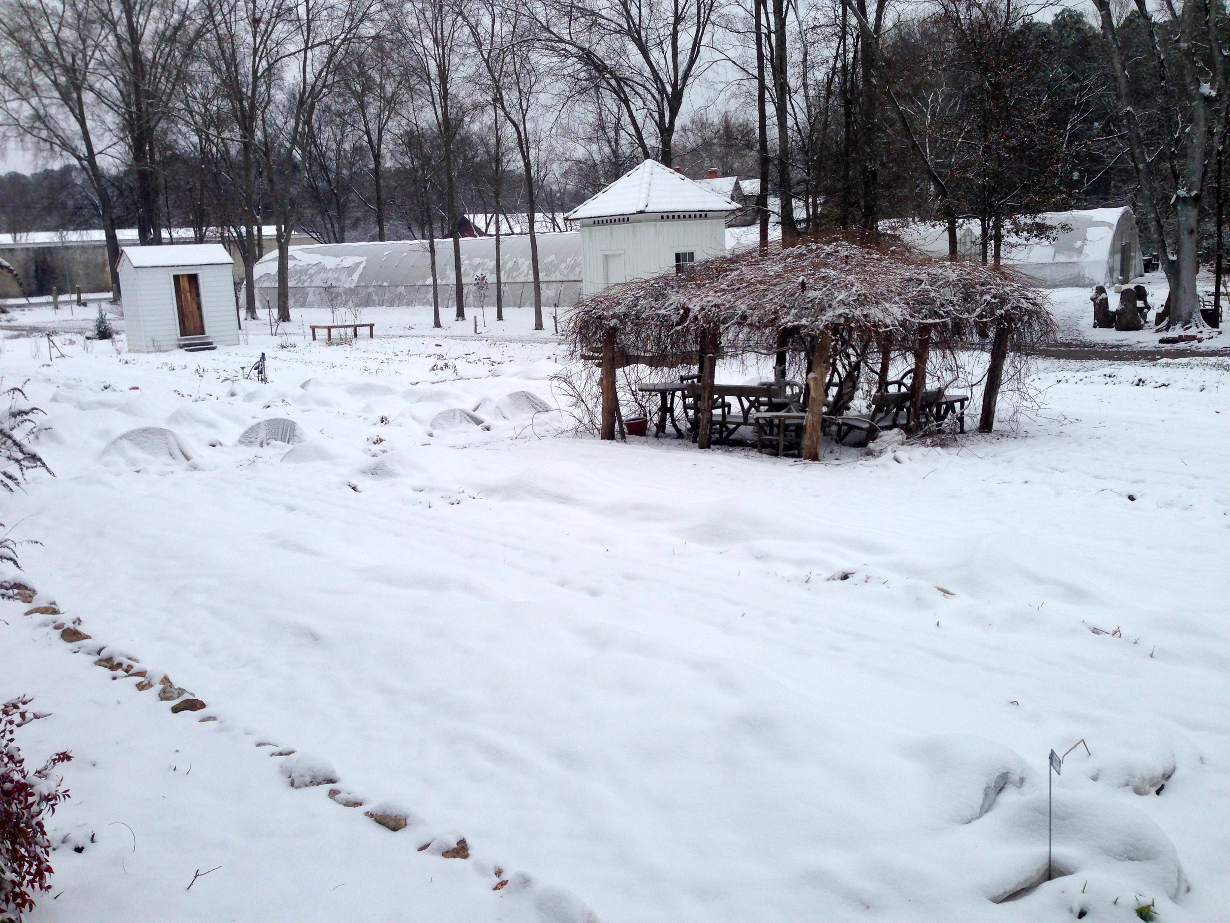 The garden beds are all white and it's not just the row covers that make it so.