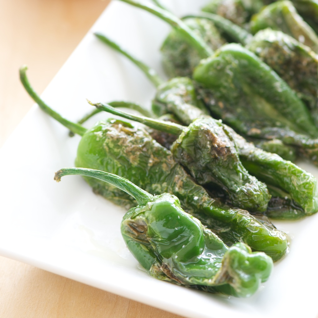 padron_peppers_dish (1).jpg