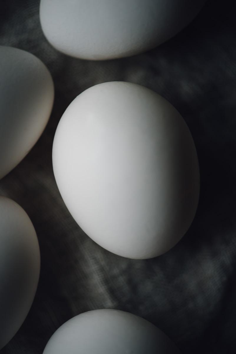 sous_vide_egg_bites-2.jpg