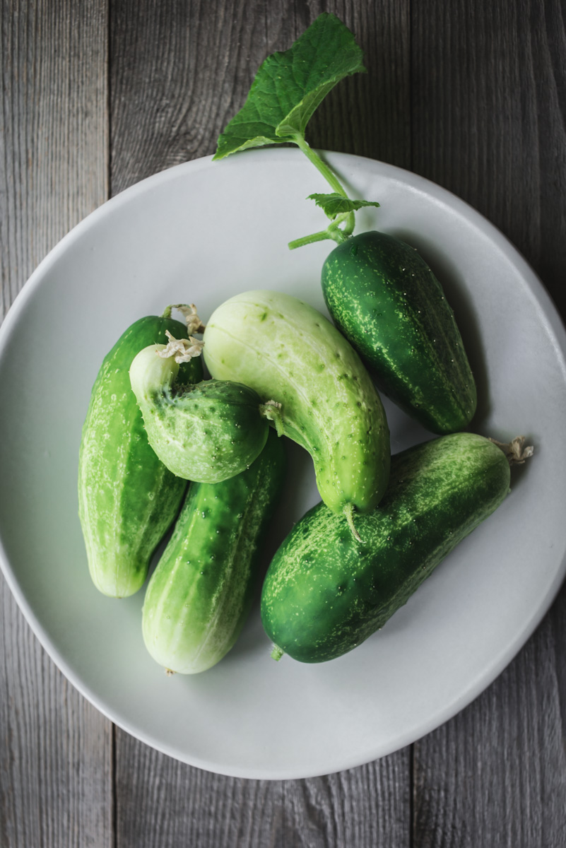 kirby_cucumber_dill_pickles-1.jpg