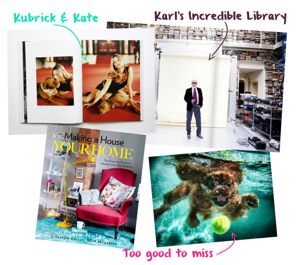 Sean Ellis: Kubrick the Dog   by Photographer Sean Ellis,   The Selby Is in Your Place   by Todd Selby,   Making a House Your Home   by Clare Nolan,   Underwater Dogs   by Seth Casteel.