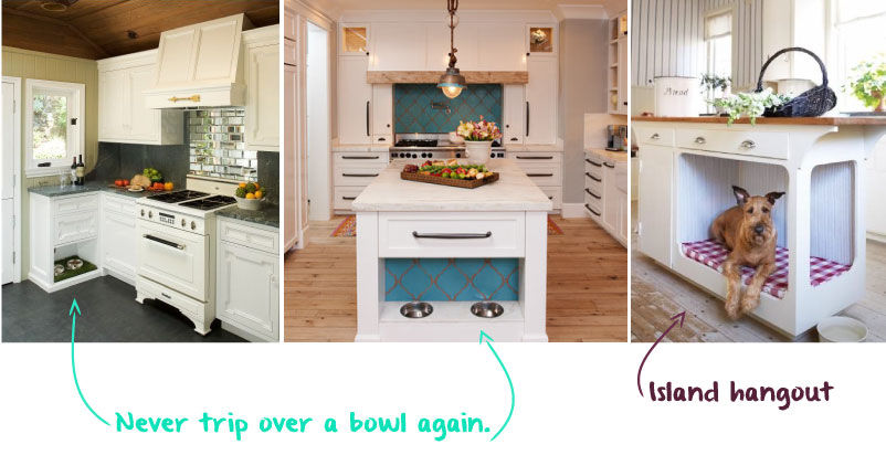 kitchen-for-dogs.jpg
