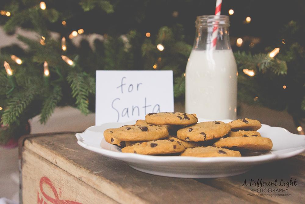 Santa Christmas Cookie Photo Session-Milk and Cookies on Christmas Eve