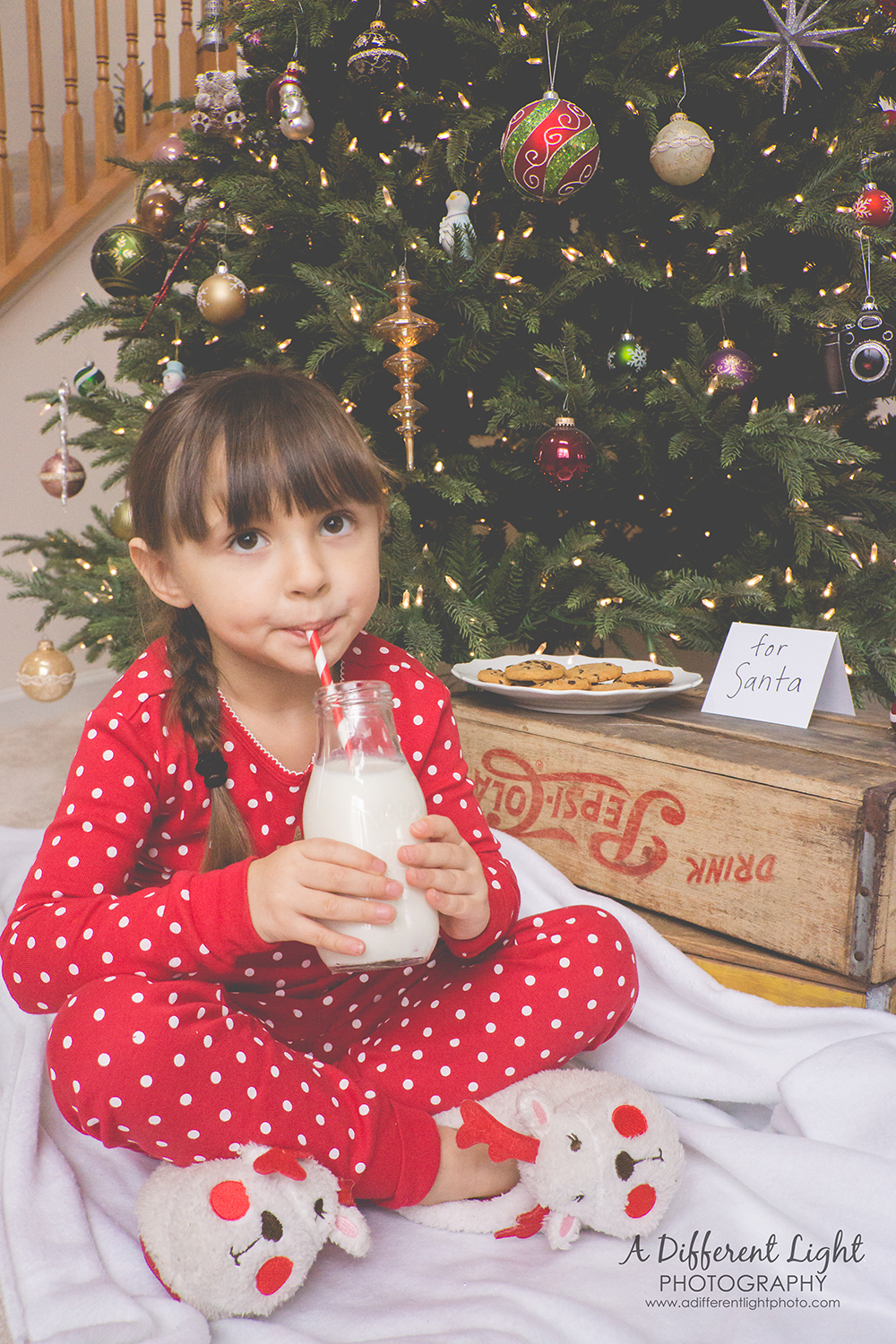 Milk and Cookies Photo Session- Christmas Eve Waiting for Santa