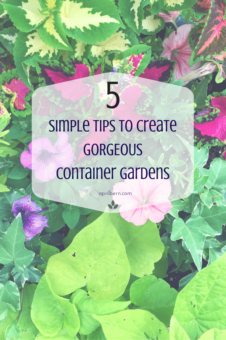 Five Tips to Create Gorgeous Container Gardens